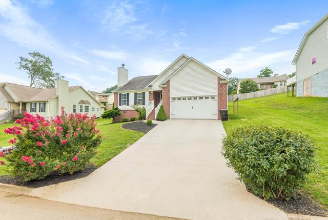 3919 Mountain Vista Rd, Knoxville, TN 37931 (#1125113) :: The Sands Group