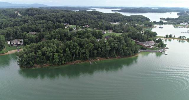 Lot 23 David Swann Drive, Dandridge, TN 37725 (#1125124) :: Realty Executives
