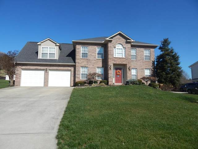689 Cordova Lane, Lenoir City, TN 37771 (#1125165) :: Shannon Foster Boline Group