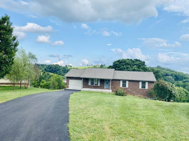 178 Makalley Lane, Tazewell, TN 37879 (#1125175) :: Realty Executives Associates Main Street
