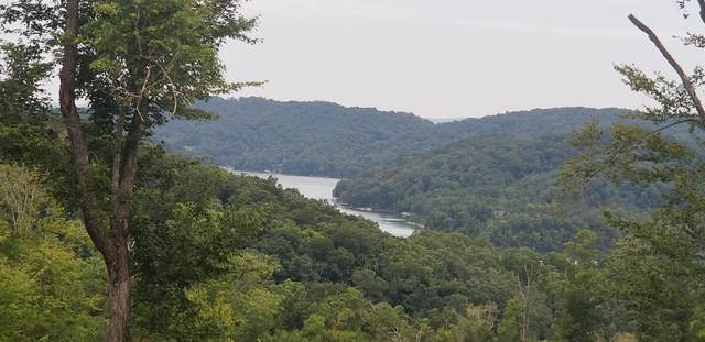 Lot 45 Ph3 Hickory Point Lane, Maynardville, TN 37807 (#1125324) :: Billy Houston Group