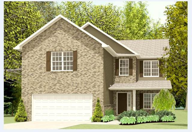1102 Sky Top Lane, Powell, TN 37849 (#1125496) :: Tennessee Elite Realty