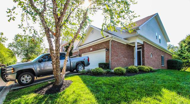 8311 David Tippit Way, Knoxville, TN 37931 (#1125779) :: The Sands Group