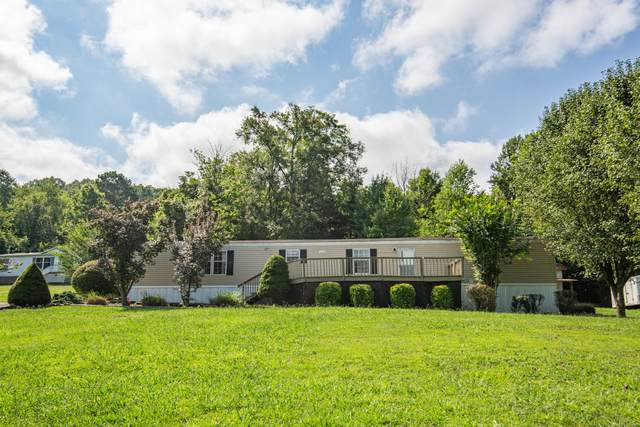 540 Catlett Drive, Kodak, TN 37764 (#1125789) :: The Terrell Team