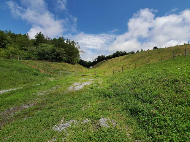 Lot 1 Maples Branch Rd, Sevierville, TN 37862 (#1125809) :: The Terrell Team