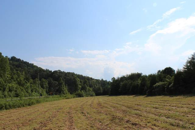 Lot 2 & 3 Fairview Rd, Tellico Plains, TN 37385 (#1125893) :: Shannon Foster Boline Group