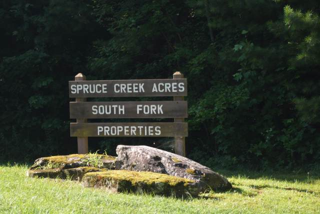 556 Blazing Saddle Drive, Jamestown, TN 38556 (#1125999) :: Tennessee Elite Realty