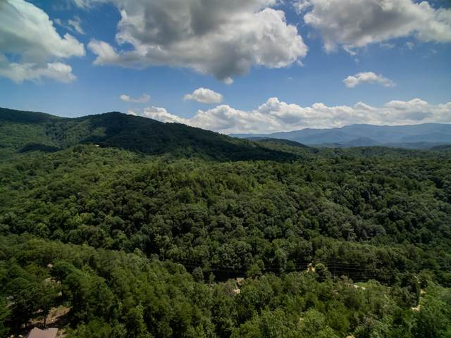 Wears Valley Rd, Townsend, TN 37882 (#1126066) :: JET Real Estate