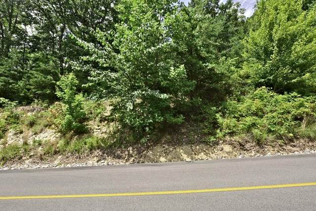 Lot 121e Settlers View Lane, Sevierville, TN 37862 (#1126098) :: Venture Real Estate Services, Inc.