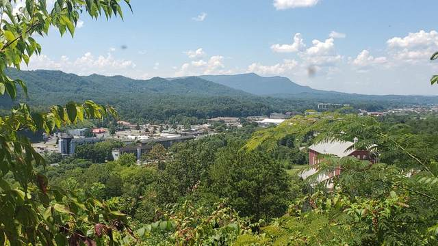 Lots 11-12 Laurelwood Dr Drive, Pigeon Forge, TN 37863 (#1126105) :: The Terrell Team