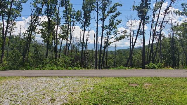 Lots 13 & 14 Laurelwood Dr Drive, Pigeon Forge, TN 37863 (#1126110) :: Realty Executives Associates