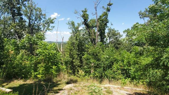 Lots 15 & 16 Laurelwood Dr Drive, Pigeon Forge, TN 37863 (#1126113) :: Realty Executives Associates