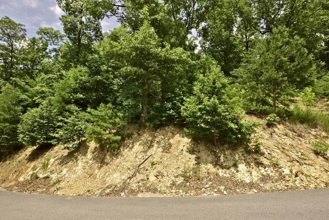 Lot 120e Settlers View Lane, Sevierville, TN 37862 (#1126117) :: Venture Real Estate Services, Inc.
