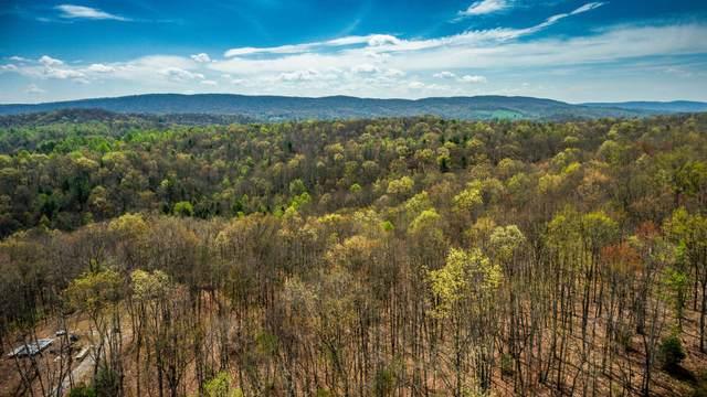 Lot #48 Green Ridge Tr, Harriman, TN 37748 (#1126317) :: Venture Real Estate Services, Inc.