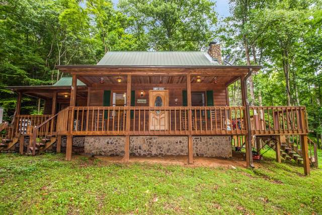 2229 Lones Branch Lane, Sevierville, TN 37876 (#1126338) :: Realty Executives