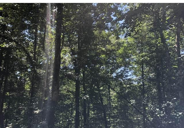 Peanut Lane, Tazewell, TN 37879 (#1126511) :: Tennessee Elite Realty