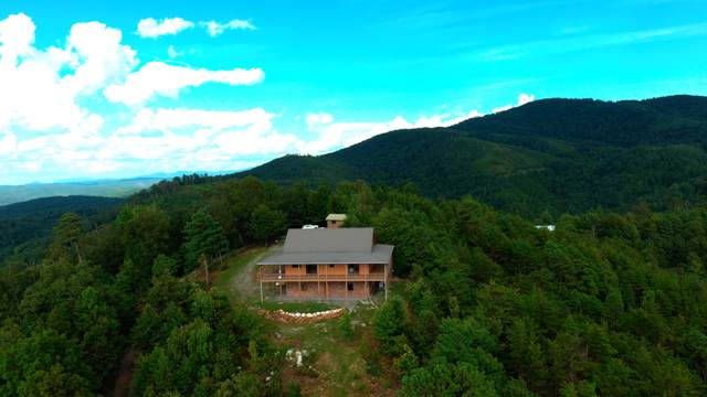 1145 Old Bald River Rd, Tellico Plains, TN 37385 (#1126724) :: Billy Houston Group