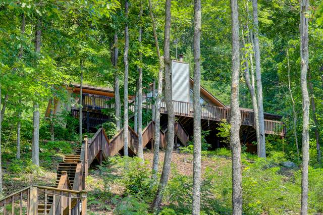 845 Lakeview Drive, Sharps Chapel, TN 37866 (#1127161) :: Realty Executives