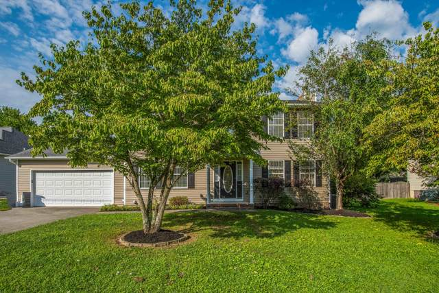 2316 Windcastle Lane, Knoxville, TN 37923 (#1127199) :: Realty Executives