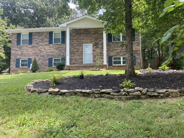 11130 Concord Woods Drive, Knoxville, TN 37934 (#1127327) :: Realty Executives