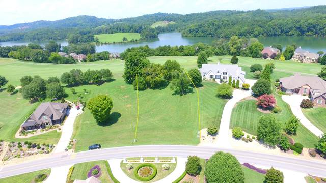 771 Rarity Bay Pkwy, Vonore, TN 37885 (#1127416) :: Shannon Foster Boline Group