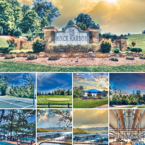 Smokey Quartz Blvd, New Tazewell, TN 37824 (#1127504) :: The Cook Team