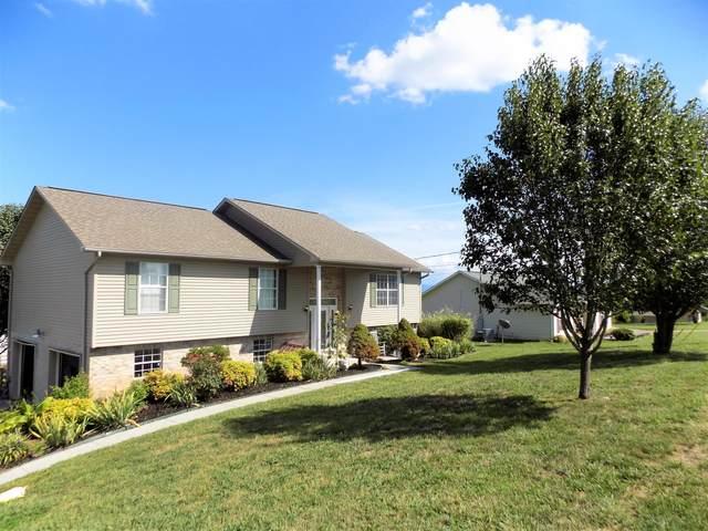 556 Keene Circle, Dandridge, TN 37725 (#1127568) :: Shannon Foster Boline Group