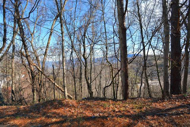 Lot 6 Ski View Drive, Gatlinburg, TN 37738 (#1127572) :: The Terrell Team