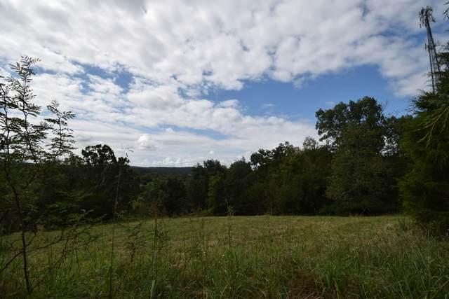 0 Windy Hill Lane, Strawberry Plains, TN 37871 (#1127828) :: Realty Executives