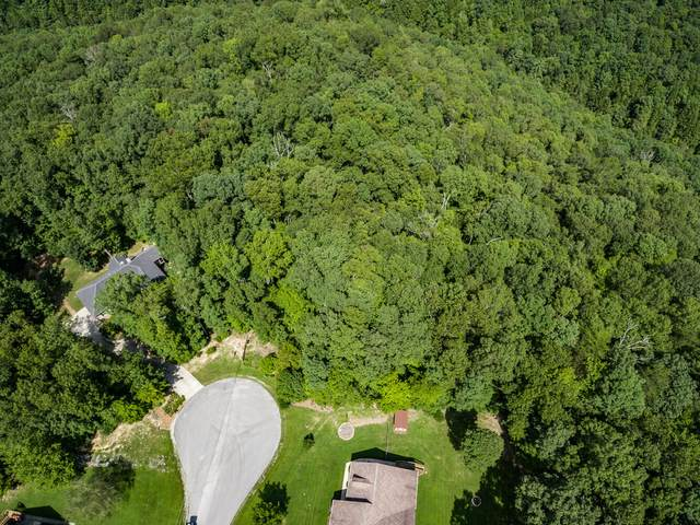 15.98 AC Obed Point, Crossville, TN 38571 (#1127954) :: Catrina Foster Group