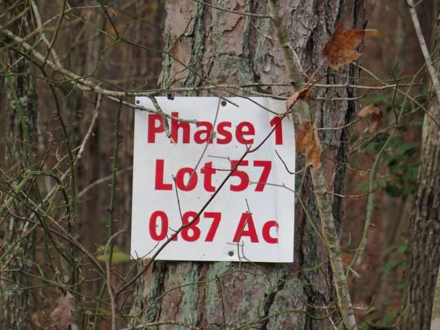 Dubose Drive, Jamestown, TN 38556 (#1127975) :: Cindy Kraus Group | Realty Executives Associates