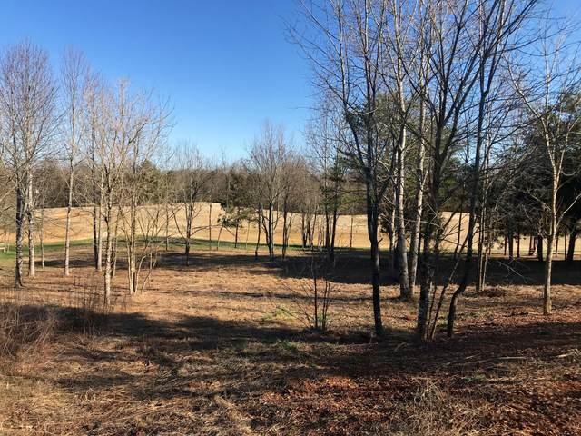 Dudi Trail, Vonore, TN 37885 (#1128049) :: Shannon Foster Boline Group