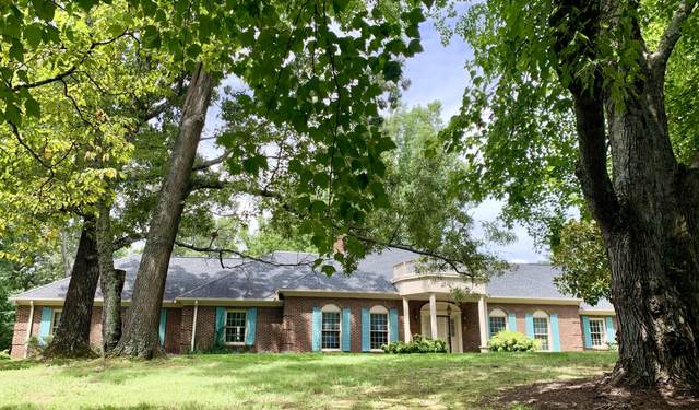 7117 Hickory Hills Drive, Knoxville, TN 37919 (#1128194) :: Realty Executives Associates