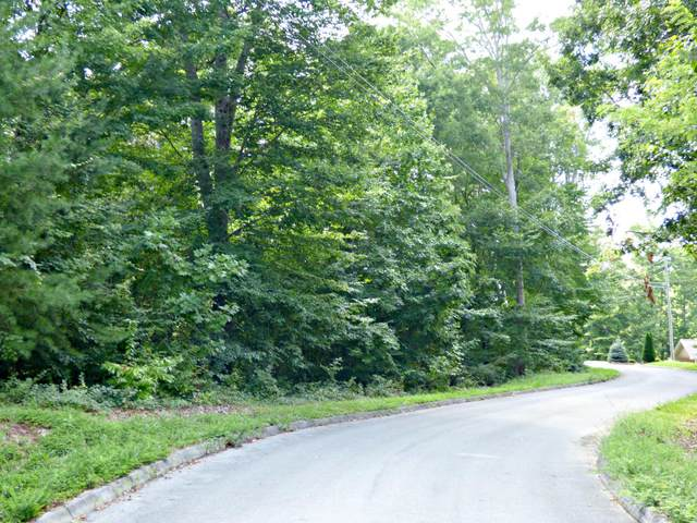 Lot 2 Persimmon Orchard Drive, Dandridge, TN 37725 (#1128461) :: Realty Executives
