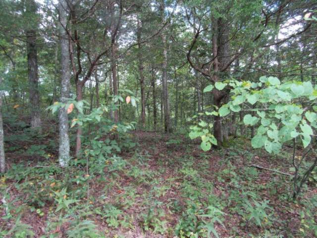 Lot 3 Backwoods Tr, Celina, TN 38551 (#1128471) :: Cindy Kraus Group | Realty Executives Associates