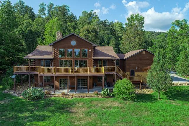 133 Hidden Springs Rd, New Tazewell, TN 37825 (#1128593) :: Realty Executives