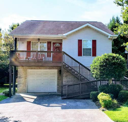 755 Plantation Drive, Pigeon Forge, TN 37863 (#1128614) :: Realty Executives
