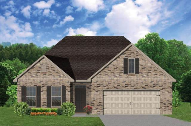 1725 Green Parrot Drive, Knoxville, TN 37922 (#1128641) :: The Sands Group