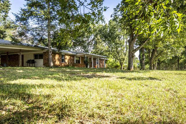 858 Leadvale Church Rd Rd, White Pine, TN 37890 (#1128677) :: Catrina Foster Group