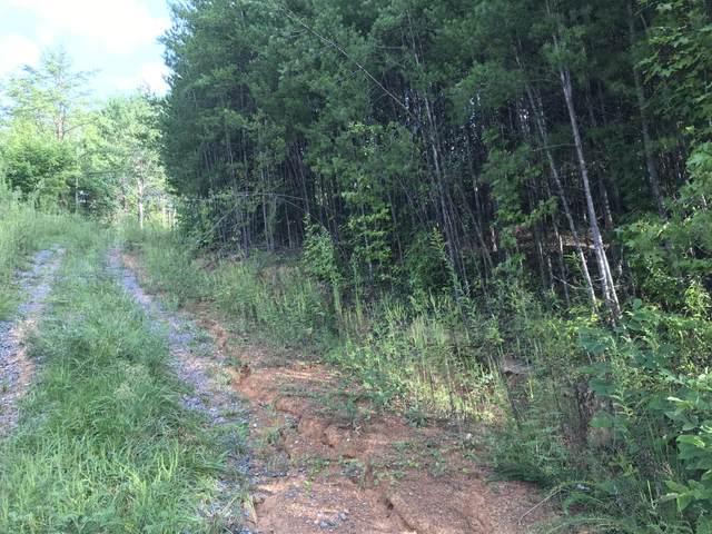 Yellowwood Dr., Sevierville, TN 37868 (#1128699) :: The Terrell Team