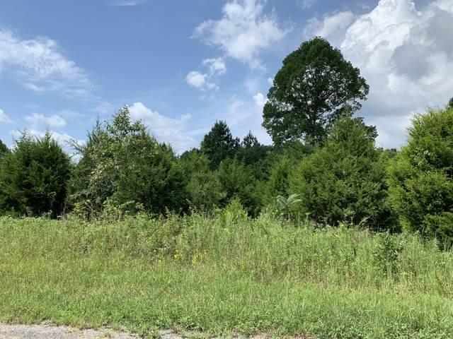 271 Cedar Springs Lane, Gainesboro, TN 38562 (#1128702) :: Billy Houston Group