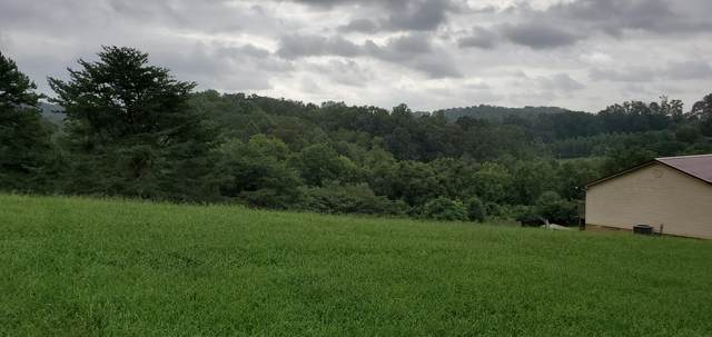 Tbd Newman Hollow Rd, Bean Station, TN 37708 (#1128722) :: Shannon Foster Boline Group