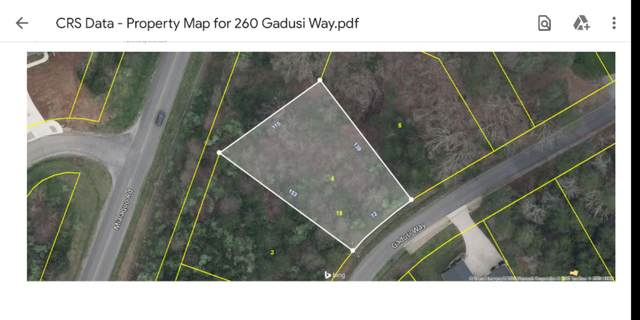 260 Gadusi Way, Loudon, TN 37774 (#1128739) :: Venture Real Estate Services, Inc.