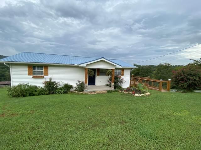 140 Walnut Circle, New Tazewell, TN 37825 (#1128858) :: The Cook Team