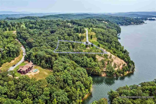 000 River Run Trail, Spring City, TN 37381 (#1128882) :: Billy Houston Group