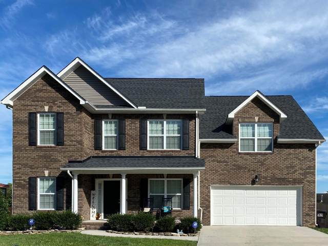 6114 Hollow View Lane, Knoxville, TN 37924 (#1128976) :: Exit Real Estate Professionals Network