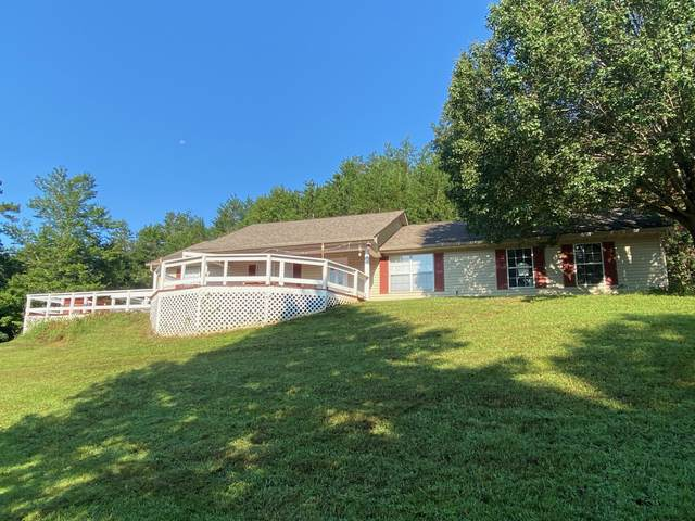 3631 Livia Drive, Maryville, TN 37803 (#1129009) :: Shannon Foster Boline Group