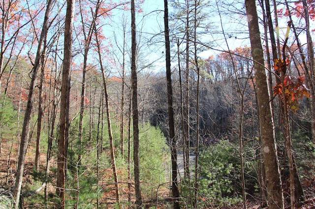 Lot 29E Cool Water Lane, Sevierville, TN 37862 (#1129055) :: Venture Real Estate Services, Inc.