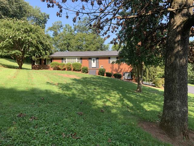 1024 Buckskin Tr, Knoxville, TN 37920 (#1129231) :: Billy Houston Group