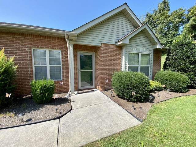 113 Creed Way, New Tazewell, TN 37825 (#1129259) :: Billy Houston Group